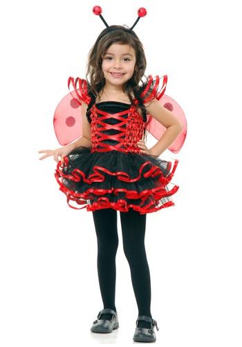 Toddler Lady Bug Cutie Costume