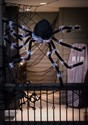 Poseable Black 50 inch Spider Alt 1