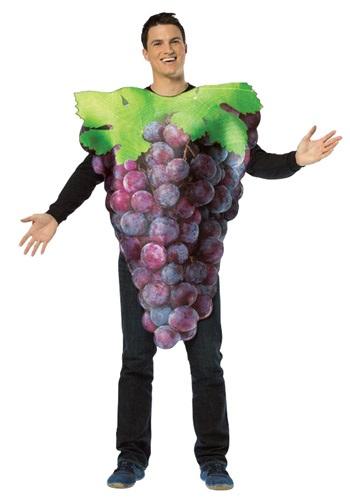 Purple Grapes Adult Costume