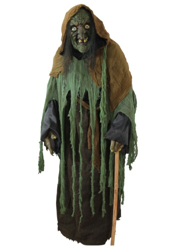 Adult Witch Costume