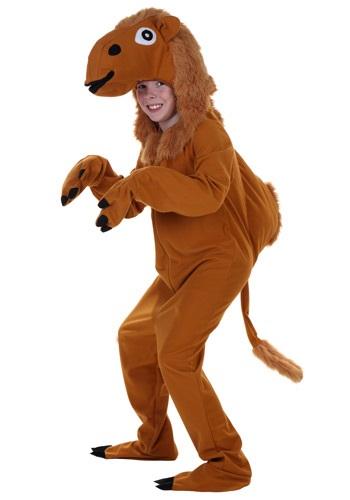 Child Camel Costume