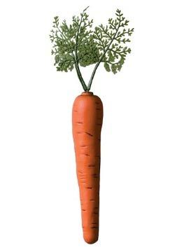 Bunny Carrot Accessory