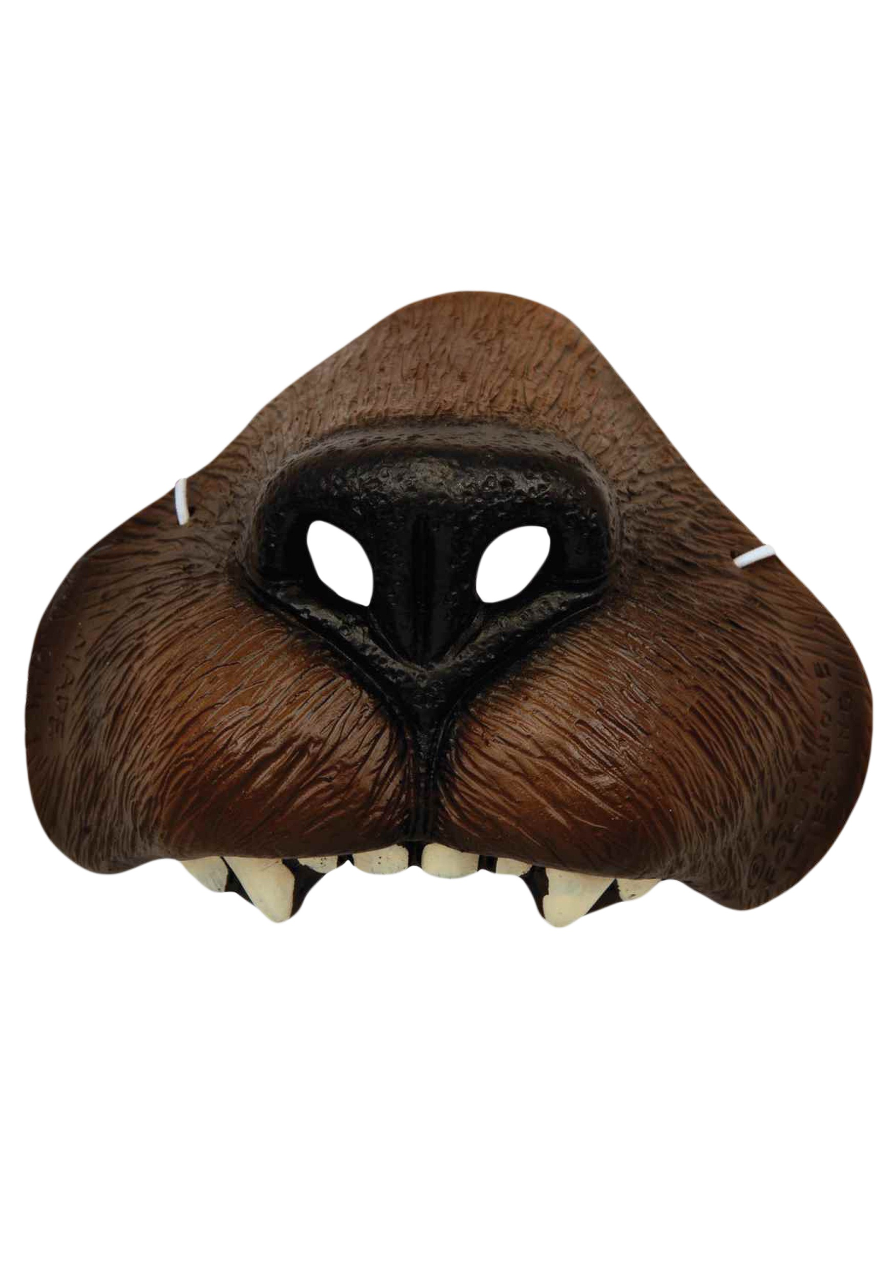 INOpets.com Anything for Pets Parents & Their Pets Bear Nose