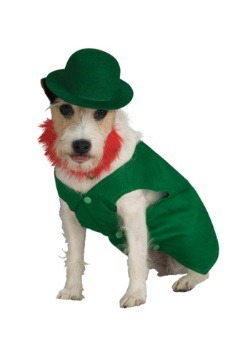 Leprechaun Pet Costume