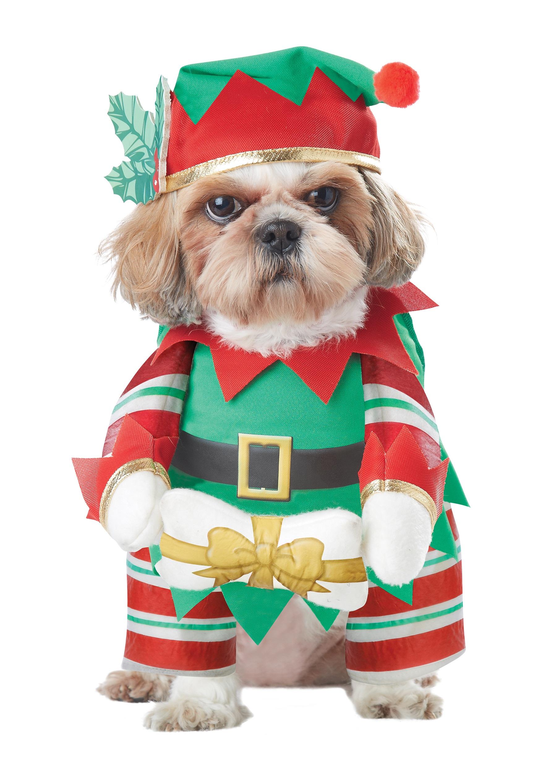 sc 1 st  Halloween Costumes UK & Elf Pup Dog Costume