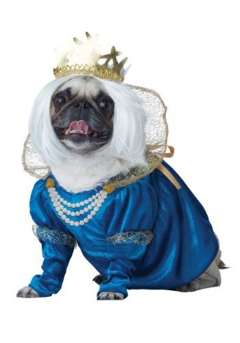 Queen of Bones Dog Costume