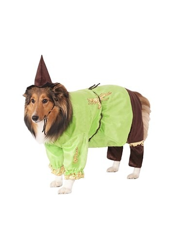 Scarecrow Pet Costume