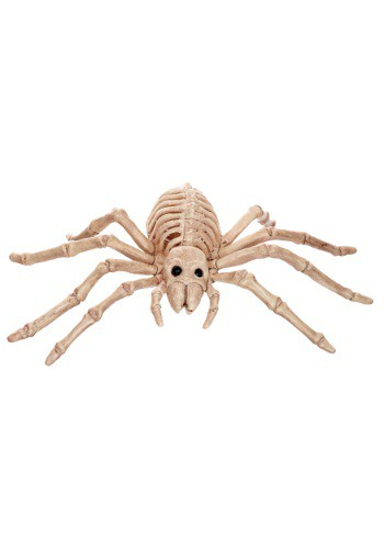 Mini Skeleton Spider
