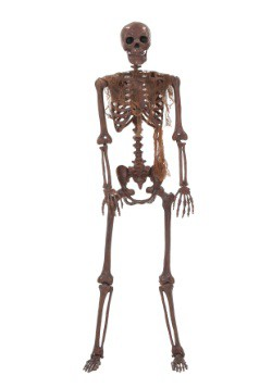 Decayed Poseable Skeleton