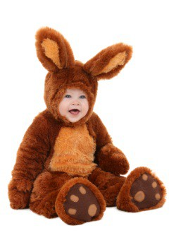 Infant Brown Bunny