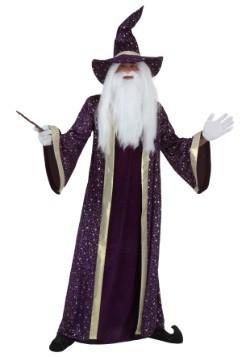 Plus Size Wizard Costume