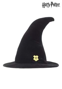 Hogwarts Student Witch Hat