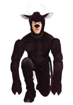 Toro the Terri-Bull Costume