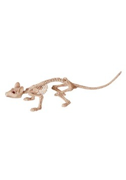Mini Skeleton Rat