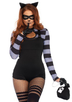 Cat Burglar Womens Costume