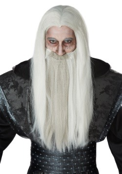 Adult Dark Wizard Wig and Beard Set