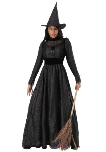 Plus Size Deluxe Dark Witch Costume
