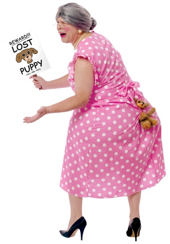 Lost Dog Costume