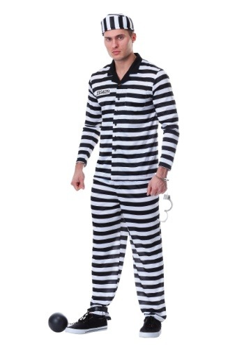 Men's Jailbird Costume
