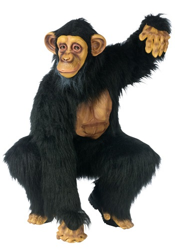 Adult Chimpanzee Costume