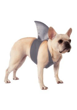 Pet Shark Fin Costume