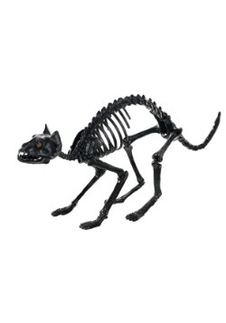 "10"" Black Crystal Eyes Cat Skeleton"