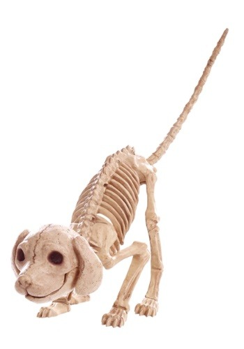 "7.5"" Puppy Skeleton"