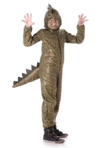 Boy's Dinosaur Costume