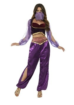 Womens Purple Belly Dancer Costume