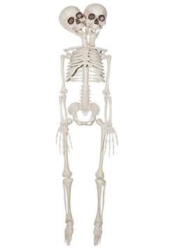 """20"""" 2 Headed Skeleton Prop"""
