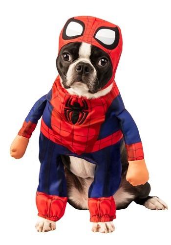 Spider-Man Pet Costume