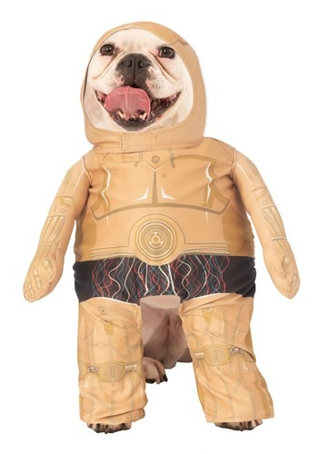Star Wars C3PO Pet Costume