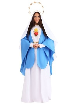 Womens Nativity Mary Costume