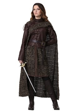 Plus Size Women's Winter Warrior Costume
