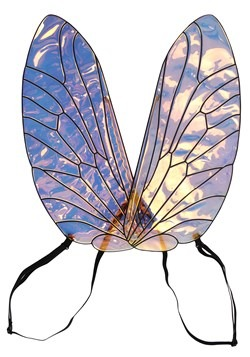 Holographic Bee Wings