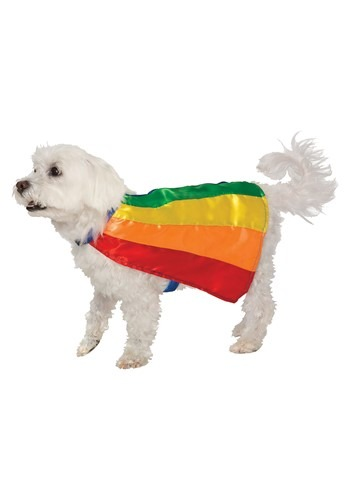 Rainbow Pet Cape