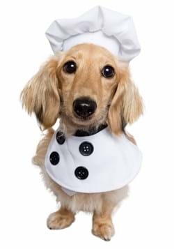 Chef Pet Costume