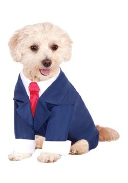 Business Suit Dog Costume
