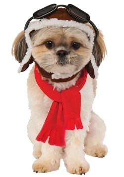 Aviator Dog Costume Kit