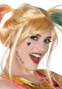 Birds of Prety Harley Quinn Adult Makeup Kit