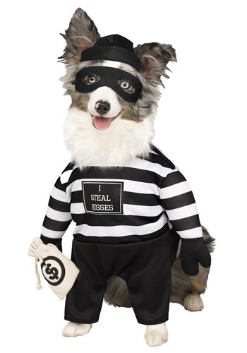 Robber Pup Pet Costume