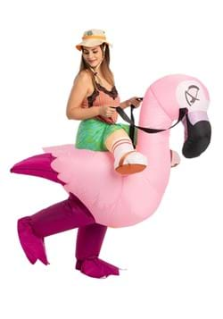 Inflatable Adult Flamingo Ride On Costume