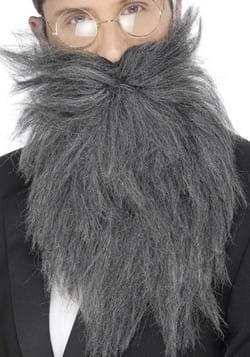 Long Grey Beard and Mustache