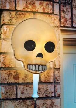 Skull Porch Light Cover